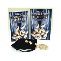 Divinatory Shells